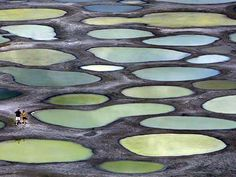 Spotted Lake (Khiluk) is a salt alkali lake in British Columbia.