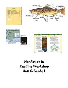 These nonfiction lessons systematically take children through the components of nonfiction stories! More at teacherspayteachers.com