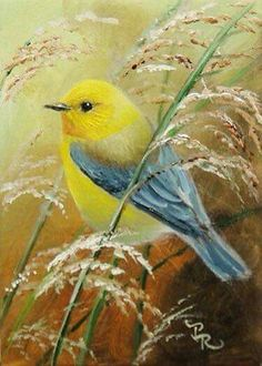 Bird Art by Paulie Rollins♥•♥•♥