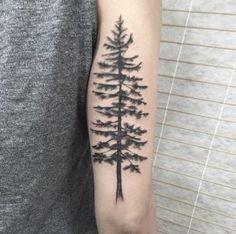 Pine tree tattoo by Ash Timlin