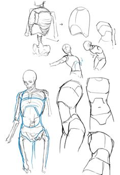 Exceptional Drawing The Human Figure Ideas. Staggering Drawing The Human Figure Ideas. Male Figure Drawing, Figure Drawing Reference, Anatomy Reference, Art Reference Poses, Human Figure Sketches, Human Reference, Human Anatomy Drawing, Anatomy Art, Body Anatomy