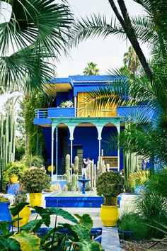 The beautiful Jardin Majorelle in #Morocco. Designed in the early 20th century by the Orientalist painter Jacques Majorelle the 12-acre botanical #gardens have colorful local flora, along with a small café and bookshop.