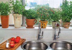 A horta também pode ficar dentro de casa. Na cozinha, a moradora aproveitou a janela da pia e colocou vasos, de diversos tamanhos e formas, com vários temperos