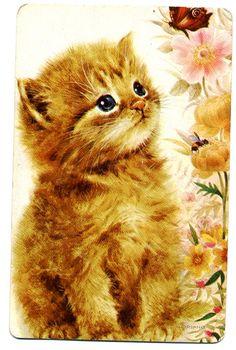 Die 601 Besten Bilder Von Katzen Vintage Pretty Cats Christmas