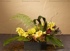 As seen in the September 2013 Flowers& magazine, this classy decor and wedding centerpiece combines fresh tropicals and permanent botanical succulents. Posted with permission of Flowers& Magazine, Photography by Ron Derhacopian, Floral design by Bert Ford AIFD, PFCI.