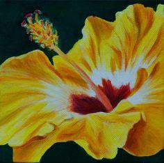 Yellow Hibiscus` - WetCanvas