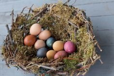 Dyed by nature — How to make Easter eggs dyed with kitchen ingredients like radish tops, blueberries, turmeric and beets, plus a homemade nest to display them in