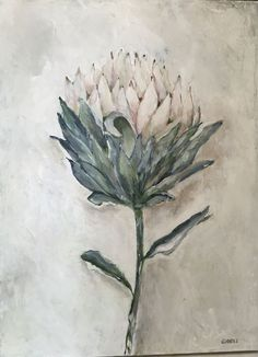 Single white protea, painted with acrylic on canvas Protea Art, Protea Flower, Botanical Drawings, Botanical Prints, Watercolor Landscape, Floral Watercolor, Pictures To Paint, Art Pictures, Floral Drawing