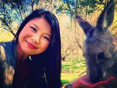 New furry pal  mi parcero peludo  but all she wanted was food  pero solo quiere la comida #friends #parcero  #peludo #kangaroo #wildlife #nature #greatoceanroad #moonlitsanctuary #victoria #australia #bonita #animallovers #travel #explore #mascota #sunnyday #viaje #amigos by lapaisitalau