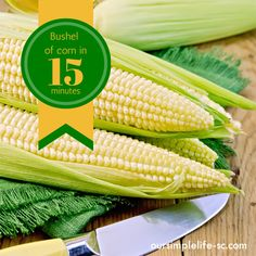 The fastest way to freeze corn - A bushel of corn in 15 minutes! http://oursimplelife-sc.com #freezing #canning