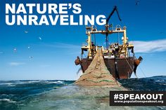 NATURE'S UNRAVELING: NET FISHING - A 120-meter-long pelagic trawler fishes off the coast of Mauritania, Atlantic Ocean, to support the ever-growing demand for fish protein in the world diet.