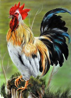 """""""The real King"""" Airbrush art Published in the american magazine """"Airbrush Technique Magazine"""" 2014 Rooster Painting, Rooster Art, Chicken Painting, Chicken Art, Chicken Pictures, Bird Pictures, Beautiful Chickens, Beautiful Birds, Farm Art"""