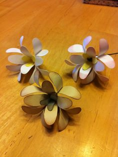 Utah's Crafty Chick: Paper Flowers