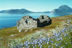 Hvalsey, ruins of Viking church