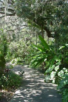 tropical paths, Leu Botanical Gardens, Orlando (10-11-2009)
