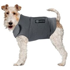 Bh Pet Gear Calm Coat Chest * Find out more details by clicking the image : Accessories for dog