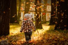 Flying leaves by Rico Radau