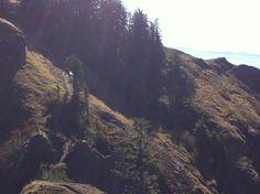 Saddle Mountain Oregon