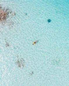 Swimming with Stingrays @ourtravelpassport