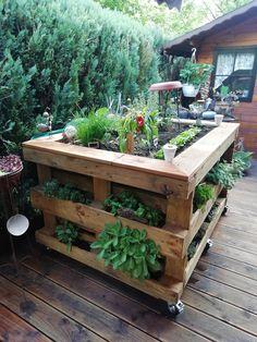 Building A Raised Garden, Raised Garden Beds, Garden Boxes, Vegetable Garden, Potager Palettes, Diy Wooden Projects, Pot Jardin, Pallets Garden, Garden Planning