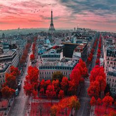 with Paris France Courtesy of Check out our new website link in bio Tag your best travel photos with The Places Youll Go, Places To Go, Beautiful Paris, Beautiful Scenery, Beautiful Things, Belle Villa, France Travel, France Europe, Travel Europe