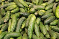 Why you should eat cucumbers  | Oasis of health