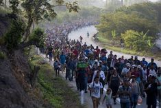 Border Patrol agents must be exhausted, and perhaps ready to surrender and head for home. Three more times this week they apprehended large groups of illegal aliens who walked across the border, sure in Donald Trump, Illegal Aliens, Us Border, Tegucigalpa, Across The Border, California Usa, Mexico City, Mendoza, San Diego