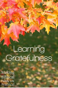 This Thanksgiving-week episode looks at the mandate to be grateful – it's an expectation and a command in the Bible to be thankful people, people who aren't marked by discontentment, grumbling, and strife. We've probably read and memorized lots of verses about that … but how can we teach it to our family? How can we live it ourselves? In a fallen world full of uncertainty and fears, can we find beauty, delight, and joy? Emphatically YES – join us and find out!