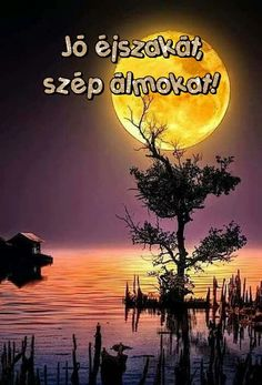 Good Night, Good Morning, Hungary, Album, Movie Posters, Pictures, Nighty Night, Buen Dia, Photos