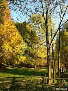 Kulturlandschaft im Herbst im Teutoburger Wald in Ostwestfalen-Lippe bei Oerlinghausen