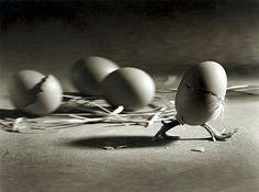 egg043gs.jpg