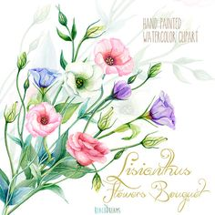 Lisianthus Flowers Hand Painted Clipart Watercolor. Eustoma Digital flowers…