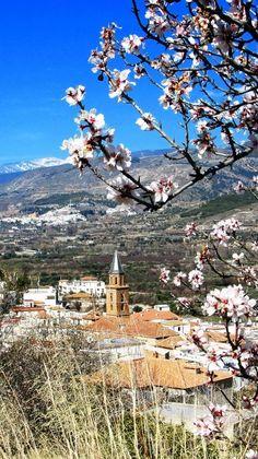 Fondón in the Alpujarra Almeriense   photo: from Enamorados de Almería's albums   https://www.facebook.com/EnamoradosDeAlmeria/photos   (Antonio López Martínez)