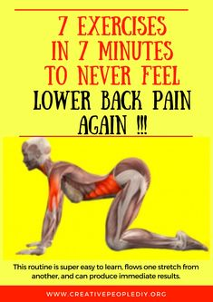 7 Exercises in 7 Minutes to Never Feel Lower Back Pain Again !!!