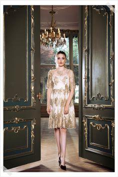 Jurken Huren. Adrianna Papell. Golden Glow. Short dress. Midi dress. Golden details. 3/4 sleeves. Chique. Party. Cocktail dress. Photographer Elza van der Saag