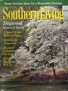 April 1998 | Dogwood: The Symbol of Spring - I do LOVE a white dogwood!  All my homes have had one.