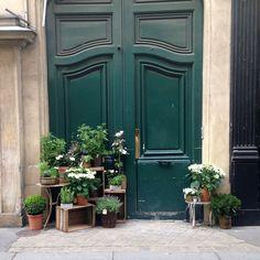 Best Paris plant and flower shops La boutique des Saints Peres
