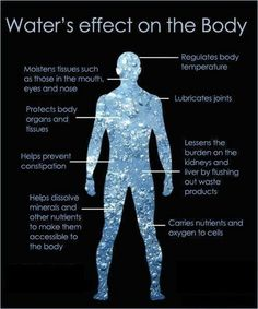 How water effects the body