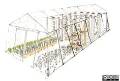 myfood | Permaculture and Aquaponic systems