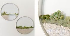 Circular Framed Planters Add Living Art to Your Walls-All images by Anne Liles PhotographyA floral designer and gardner, Kim Fisher has moved the pleasures of garden creation indoors, producing vertical planters that decorate the wall rather than tabletop or window sill. These round, transparent planters surround the greenery inside wit
