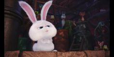 Cute Cartoon Characters, Cartoon Pics, Cute Cartoon Wallpapers, Snowball Rabbit, Cute Bunny Cartoon, Cute Love Gif, Cartoons Love, Stranger Things Funny, Secret Life Of Pets