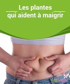 Les plantes qui aident à #maigrir   Vous cherchez à #perdre du #poids ? Découvrez aujourd'hui dans notre article les différentes #plantes qui aident à maigrir !