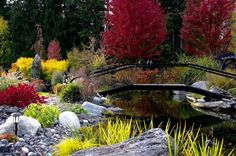 Creating beautiful water features, including natural ponds, waterfalls and creeks.