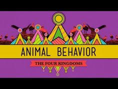 Animal Behavior- Just another Crash Course video that would work in an Animal Science (Biology) lesson!