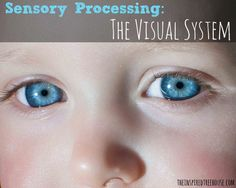 SENSORY PROCESSING: THE VISUAL SYSTEM - The Inspired Treehouse. For more sensory pins, follow @connectforkids