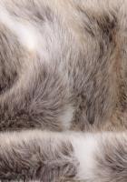 Lappland Lappland, Cats, Animals, Gatos, Animales, Animaux, Animal, Cat, Animais