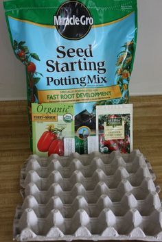 Starting A Garden: Popping Seeds In A Recycled Egg Carton