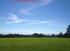 Oakes Lower Lawn