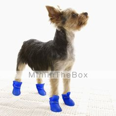 Cat Dog Boots   Shoes Jelly Shoes Anti-Slip Sole Waterproof Solid Black  Purple Yellow Blue Pink For Pets ebecf9488