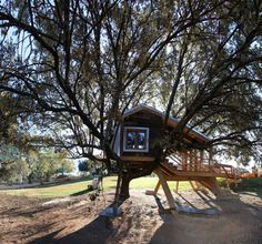 Hidden and Rooted Treehousethat's practically integrated with a full grown tree in Extremadura, Spain by Urbanarbolismo